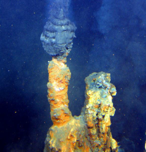 A hydrothermal vent on the ocean floor